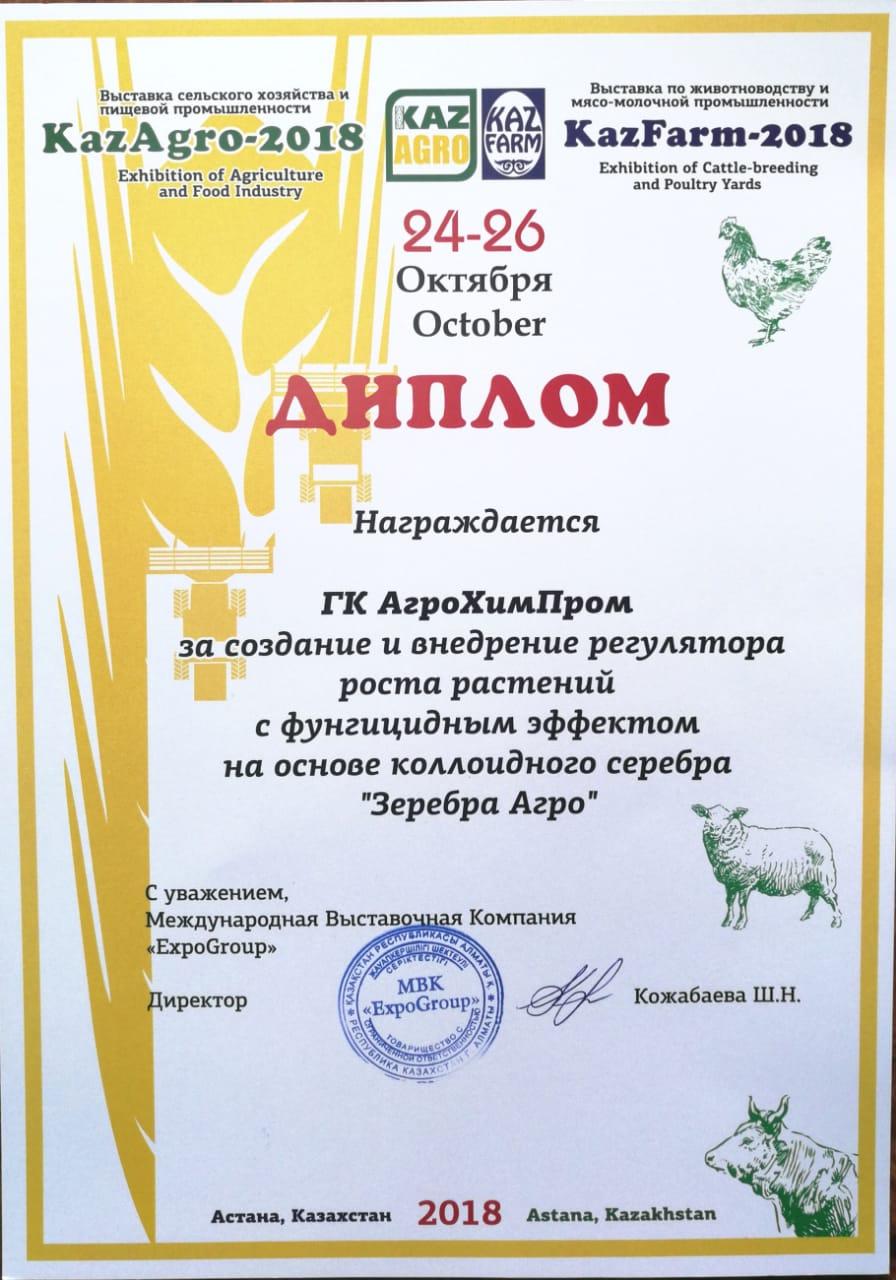 kaza5