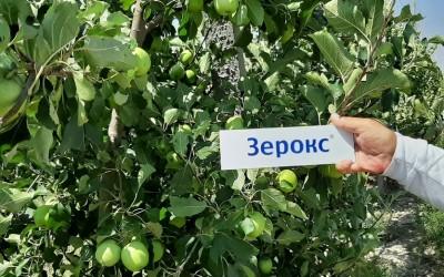ГК «АгроХимПром» помогает развивать сельское хозяйство Республики Узбекистан